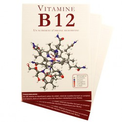 B12 pour les pros